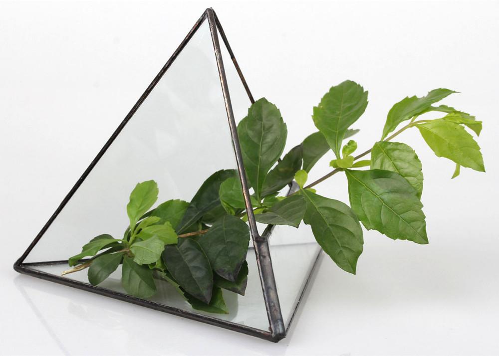 Стеклянный террариум для цветов ~ 700 руб