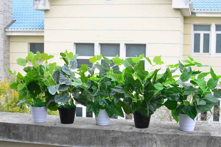 Зеленые цветы-кусты ~ 200 руб